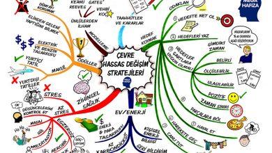 Beyin Haritaları - Örnekler