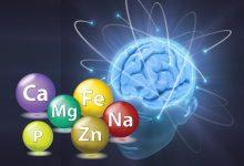 Photo of Beyin Neden Magnezyuma İhtiyaç Duyuyor?
