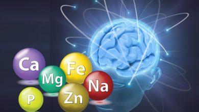 Beyin ve Magnezyum