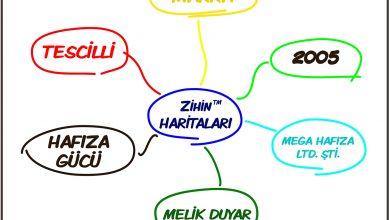 Zihin Haritası - Mega Hafıza Ltd. Şti.