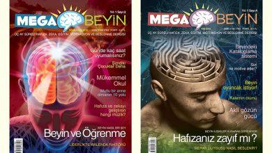 Bireysel Gelişim Dergisi