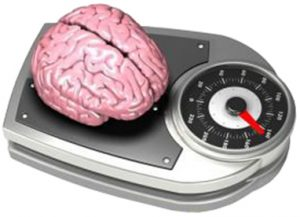 beyin ağırlığı 1,5 kilogram