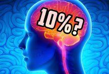 Photo of İnsan Beyni Hakkında Bilinmeyen 27 İlginç Gerçek