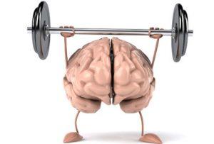 Beyin ve Hafıza Eğitimi