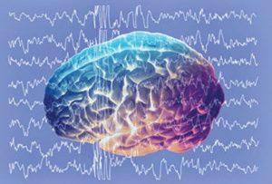 Beyin Dalgaları ve Uyku
