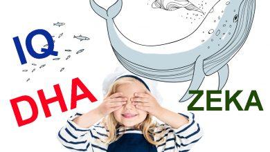 Çocukların zeki olması için DHA önemli