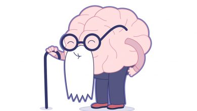 Beyin Yaşı Testi/ Zihin Yaşı Testi