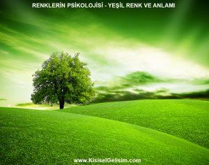 Renklerin Dili - Yeşil Renk ve Anlamı