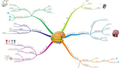 Zihin Haritası Kanunları - Zihin Haritası Nedir