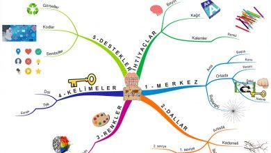 5 Adımda Beyin Haritası Nasıl Hazırlanır?
