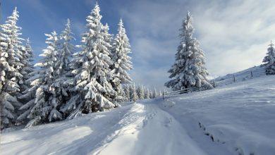 kış mevsimi için söylenmiş özlü sözler