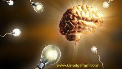 Beyin ve yaraticilik