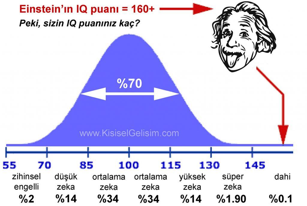 Einstein'ın IQ puamı / Einstein'ın zeka puanı
