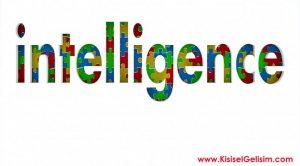 Flynn Etkisi Nedir - IQ Seviyemiz Neden Atalarımızdan Daha Yüksek?