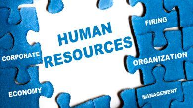 Photo of İnsan Kaynakları – Sizi Özel Kılan Nitelikler Ve Beceriler Nelerdir?