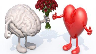duygusal zeka ve stres