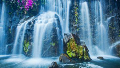 Photo of Su Felsefesi Nedir – Su: Alçak Gönüllülük, Uyum Ve Açıklık