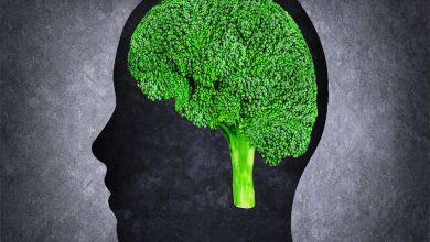 Photo of Hafıza Ve Beyin Dostu Yiyecekler – Brokoli Ve Beyin
