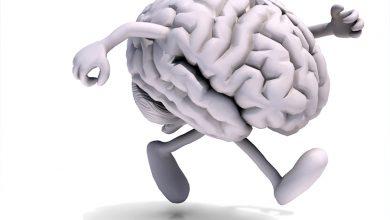 egzersiz ve beyin / beyin ve egzersiz