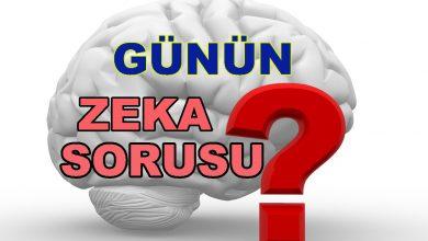 Zeka Sorusu / Zeka Testi