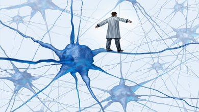 Hikaye Anlatma ve Beyin