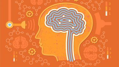 Hafıza Gücü Nasıl Artırılır