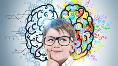 Okul Öncesi Beyin Gelişimi