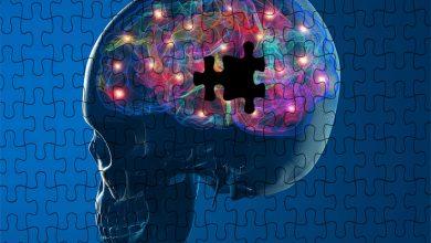 Photo of Beyin ve Yaşlanma – Beyin Yaşlandıkça Nasıl Değişir?