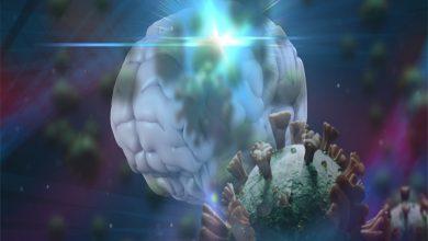 Beyindeki Koronavirüs
