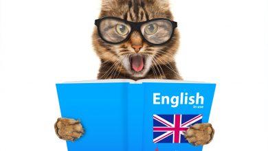 Photo of Hızlı İngilizce Nasıl Öğrenilir – Hackerler Kadar Cesur Olun!