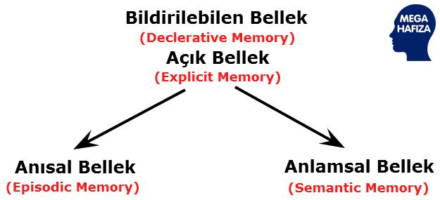 Dr. Endel Tulving - Bildirilebilen Bellek / Açık Bellek / Episodik Bellek / Anısal Bellek / Semantik Bellek / Anlamsal Bellek