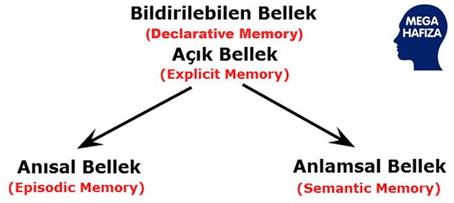 deklaratif bellek - declarative memory - bildirilebilen bellek -explicit memory - açık bellek