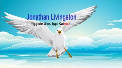 richard bach - kitap - martı jonathan livingston