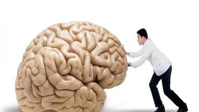 Motivasyon ve Beyin