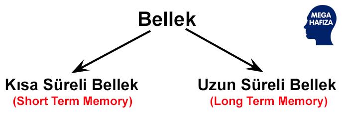 uzun süreli bellek (long term memory ) - kısa süreli bellek (short term memory)