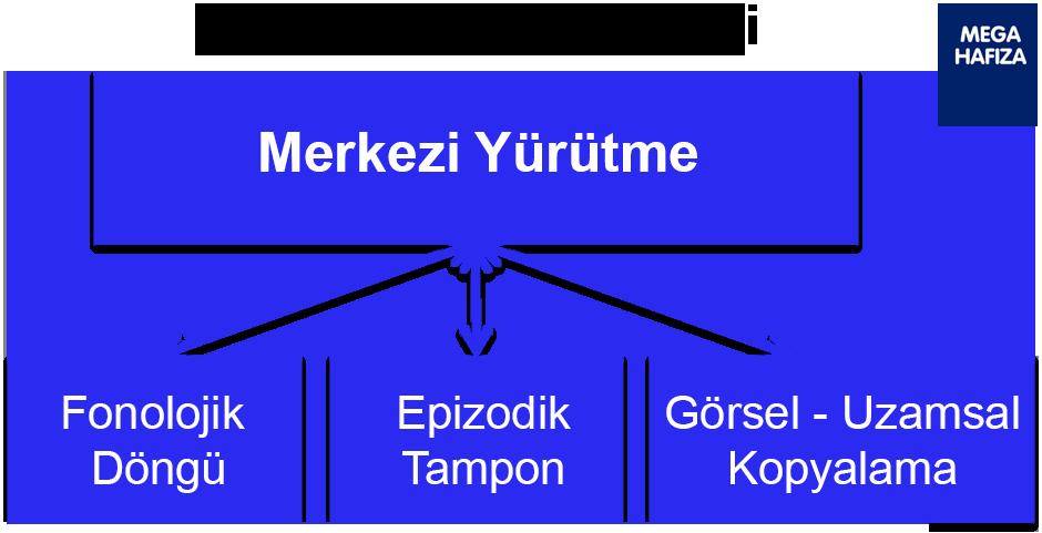 çalışan bellek modeli - çalışma belleği modeli