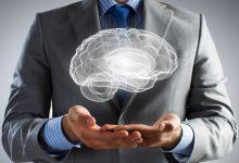 Beynimizi Tanıyalım - Premotor Korteks Alan Nedir - Premotor Cortex