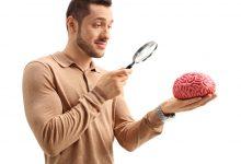 beynimizi tanıyalım - Tamamlayıcı Motor Korteks - suplementer motor korteks - supplementary motor cortex