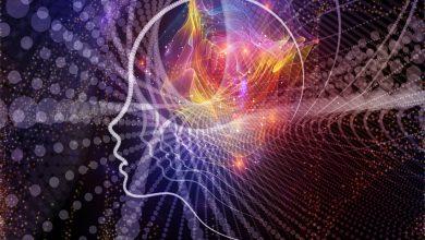 Dil Öğreneme ve Beyin